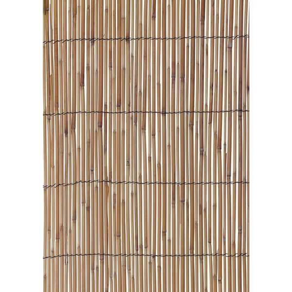 Reed Fencing Medium